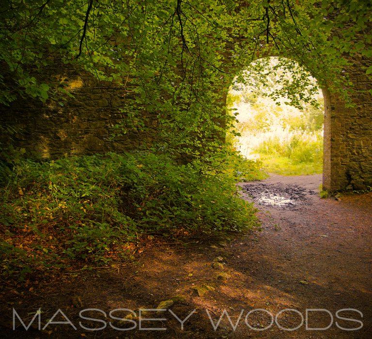 Massy Woods